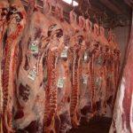 carne-de-vaca-res-681x511