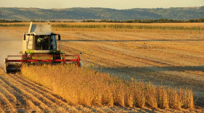La liquidación de exportaciones de granos y la agroindustria cayó 5,5% en 2018