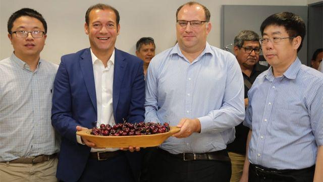Argentina exportará cerezas a China por primera vez en la historia