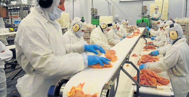 Argentina exportó carne de pollo a Canadá por primera vez