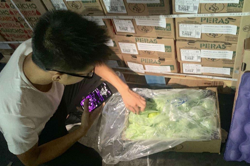 Una firma de Río Negro hizo su primera exportación de peras a China y destacan el potencial de ese mercado