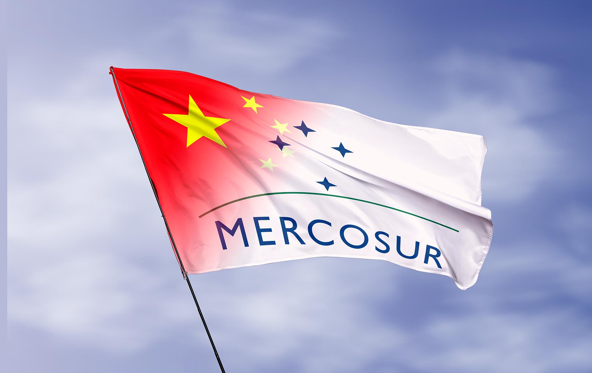 30 años del Mercosur: China desplaza a los principales socios del bloque | CONTAINER